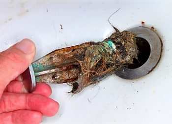 What NOT to put down your drain